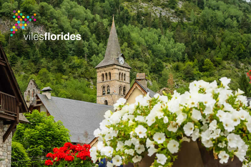 arties-viles-florides-valdaran-portada