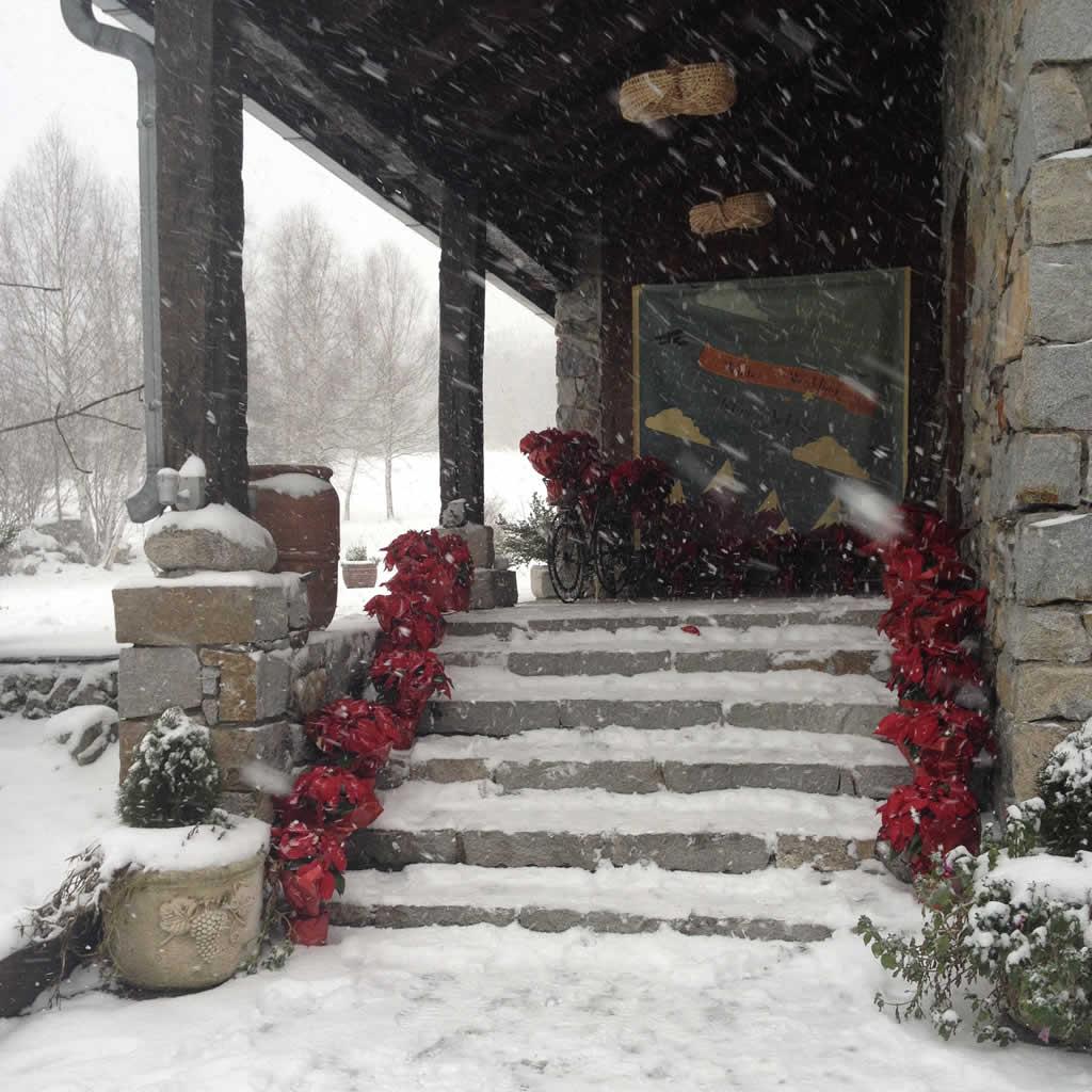 boda-invierno-baqueira-valledearan-casairene-3
