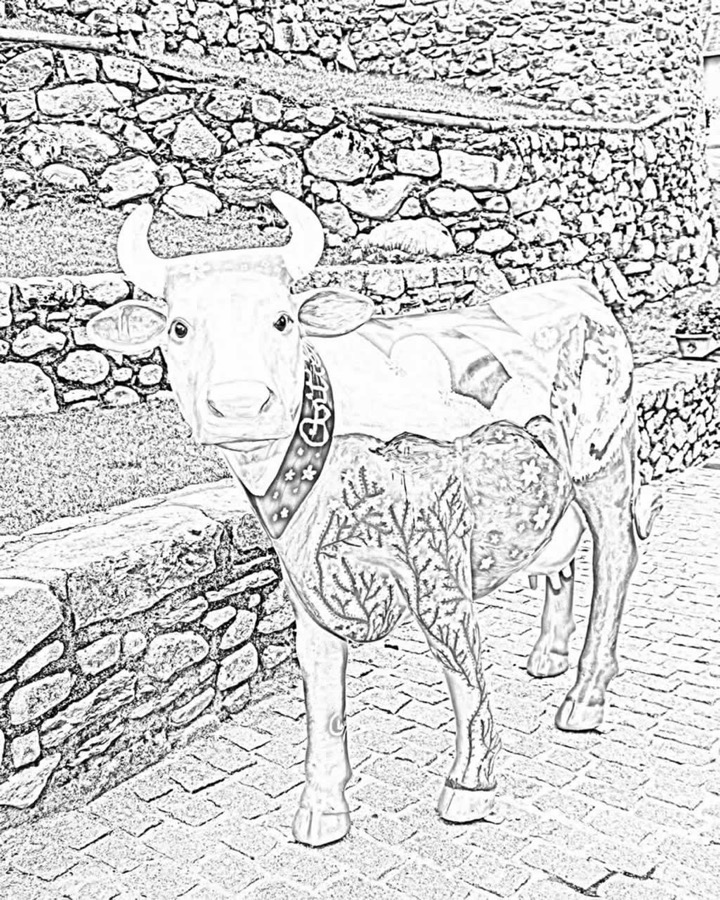 visit-arties-vacas-colorear-08